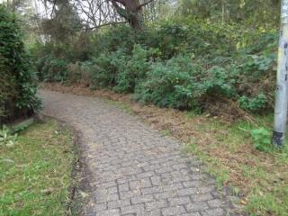 stadt-oldenburg/strassen/Radweg-Nedderend